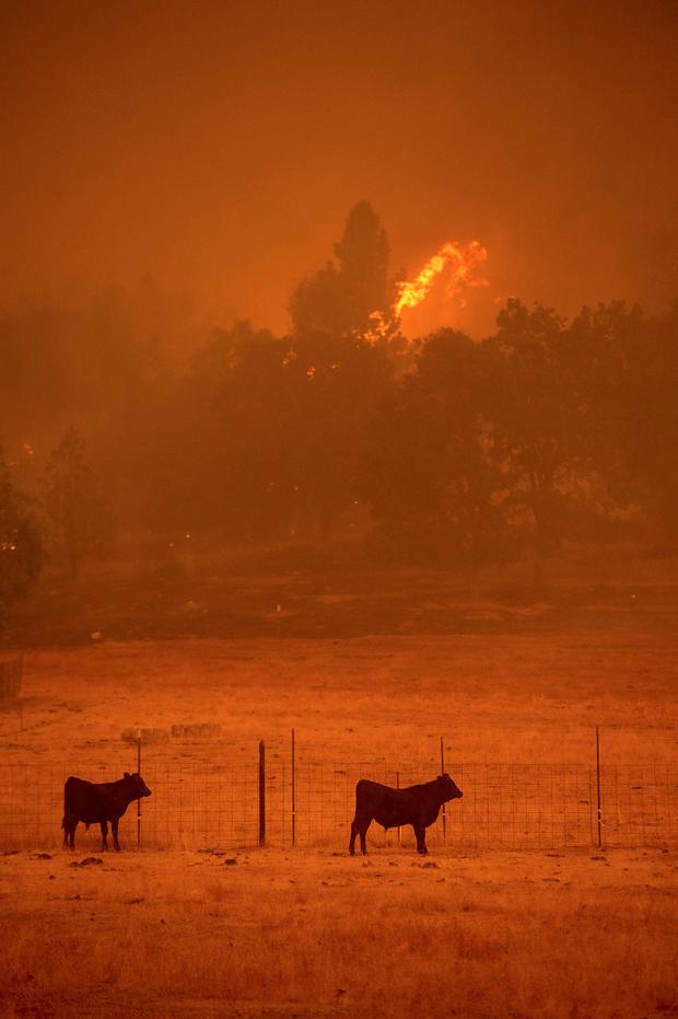 butte-fire-california-wildfire-rtsq26.jpg