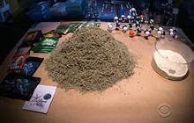 Record raid on NY warehouse of synthetic drugs