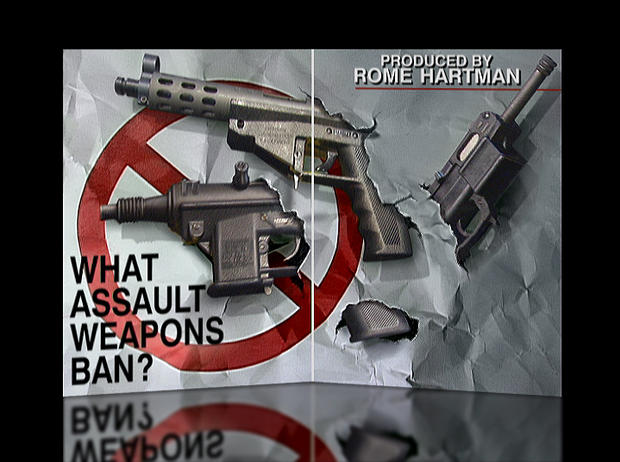 what-assault-weapons.jpg