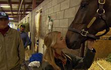 Zenyatta: A horse with charisma?