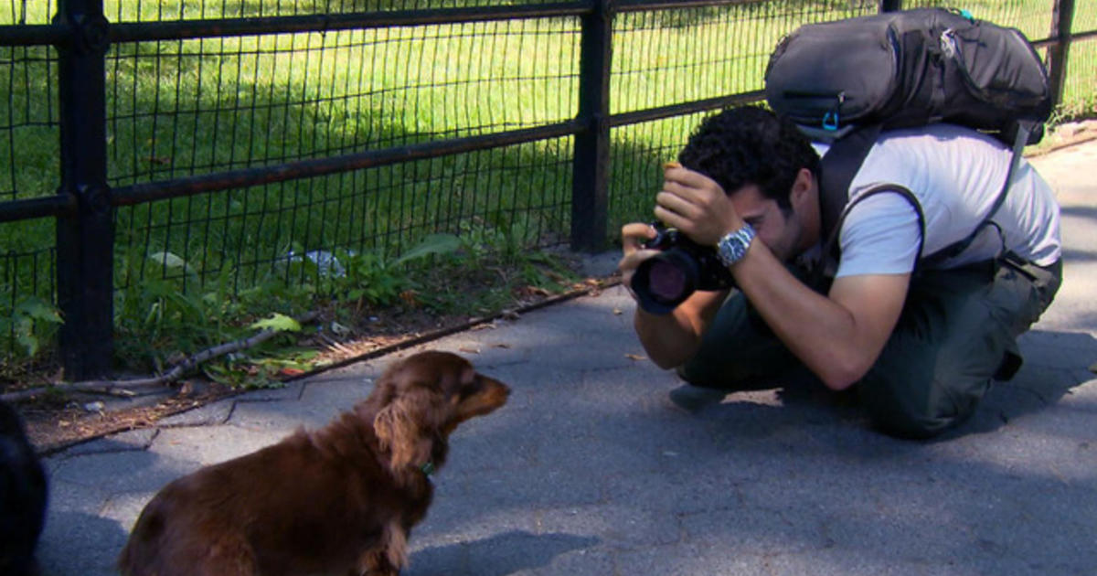 The Dogist photographs Man's Best Friend