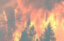 Wildfire threatens thousands near Calif. resort town