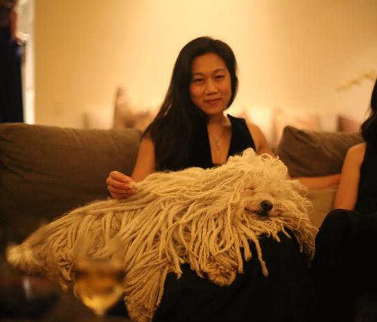 Dog Looks Like A Rug: Meet Beast Zuckerberg, Your New Favorite