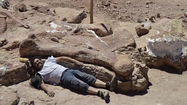 titanosaur-1-excavation-site.jpg