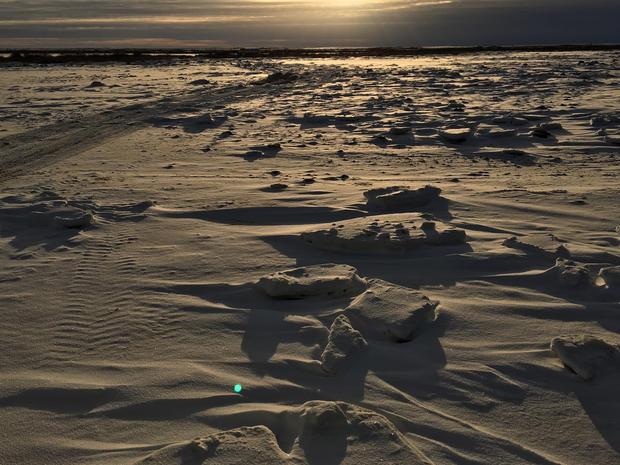 churchill-manitoba-polar-bear-capital-dustin-stephens-img9936.jpg