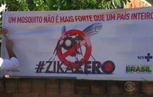 Fight against Zika escalates