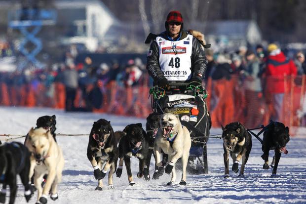 Iditarod dog-sled race-2016-03-07t072241z1513147928d1besrcfobacrtrmadp3usa-iditarod.jpg
