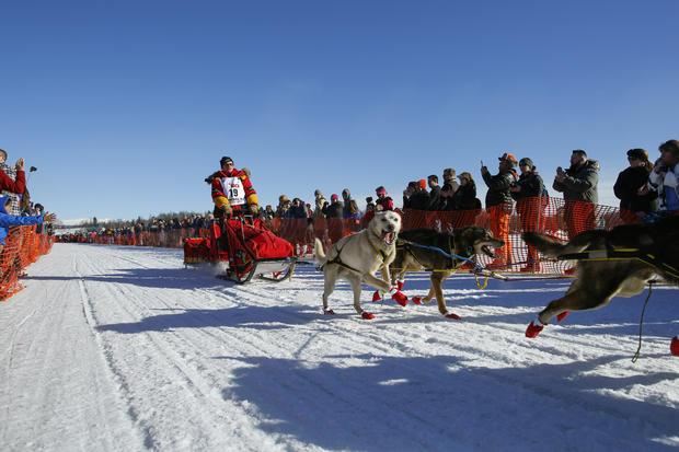 "Alaska's Iditarod: ""The last great race"""