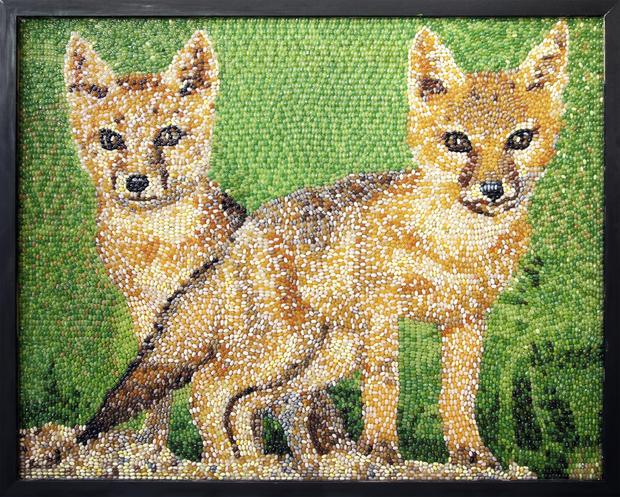 jelly-bean-art-swift-foxes.jpg