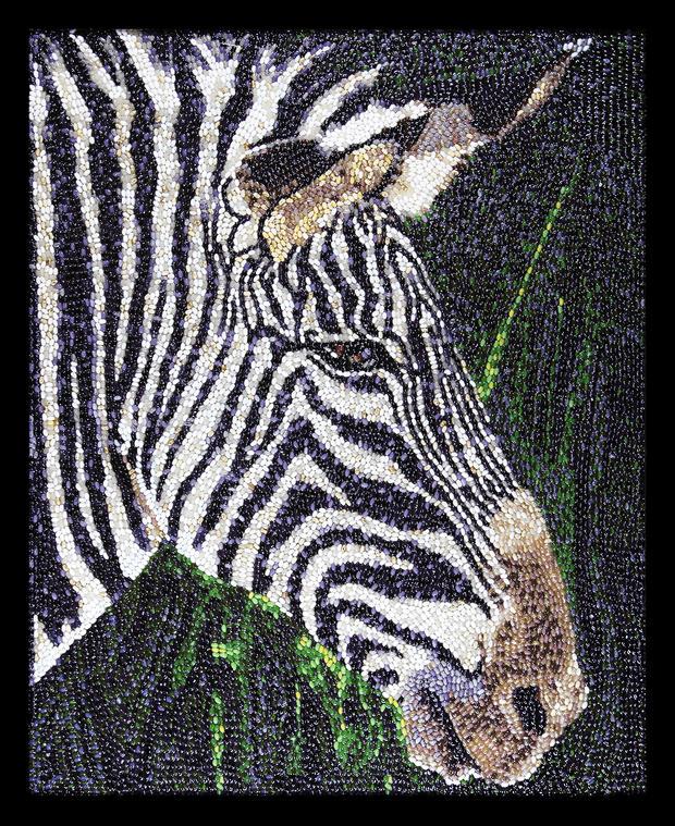 jelly-bean-art-zebra.jpg