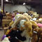 stuffed-animals-newtown-ct-warehouse-chris-kelsey-promo.jpg
