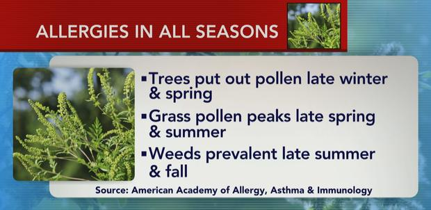 ctm0518allergiesseasons.jpg