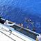 2016-05-25t141701z1584761304s1betgbzjhabrtrmadp3europe-migrants-shipwreck.jpg