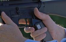 Preview: Smart Guns
