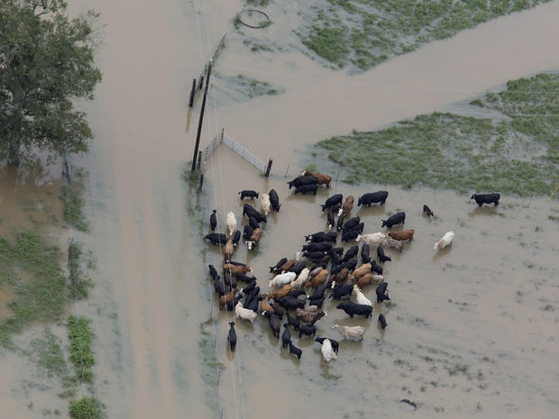 louisiana-flooding-ap16226846949098.jpg