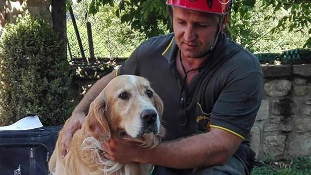 italy-quake-dog-rescue-ap-16246590417094.jpg