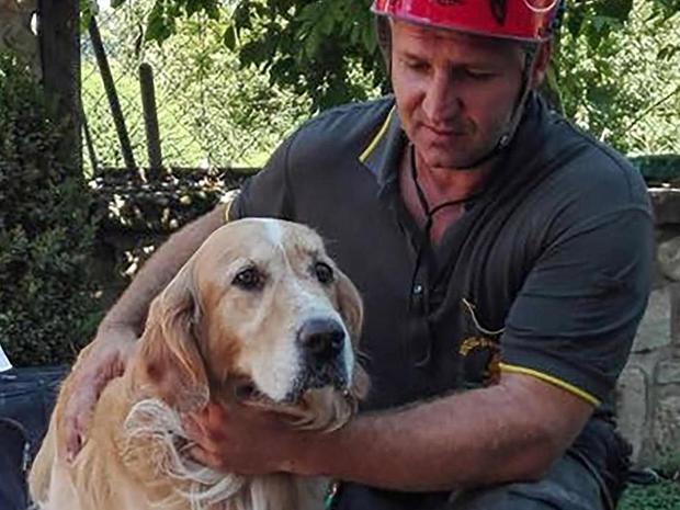 italy-quake-dog-rescue-ap-16246590417094.jpg