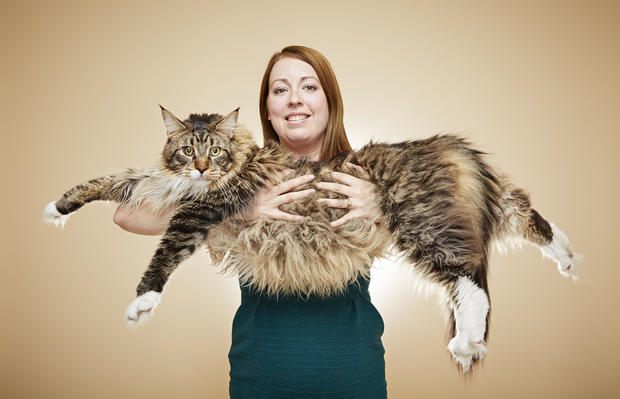 longest domestic cat living wacky guinness world records 2017 edition pictures cbs news - Smallest Cat In The World Guinness 2017