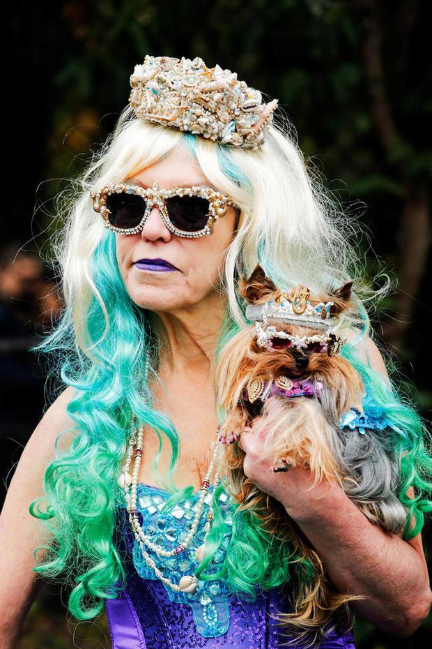halloween-dog-parade-nyc-s1aeuincnhaa-rtrmadp.jpg