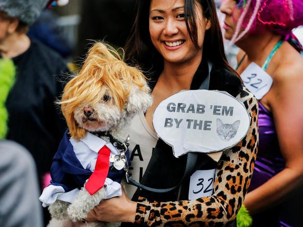 halloween-dog-parade-nyc-1591741453-s1aeuinaytaa.jpg