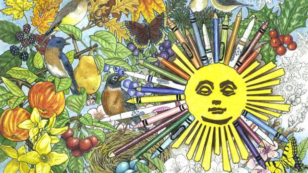 coloring-book-sun-crayola-620.jpg
