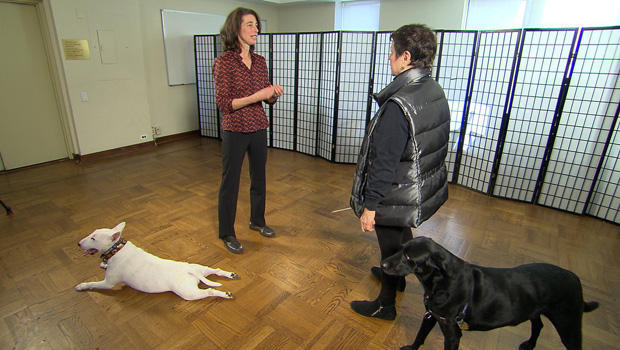dogs-alexandra-horowitz-martha-teichner-620.jpg