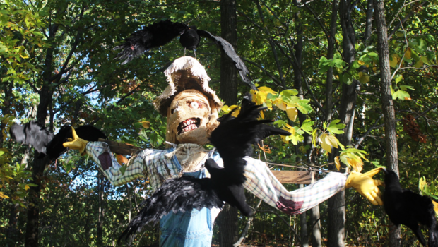Cbsnews Pictures Spooky Scarecrows Come To Life At