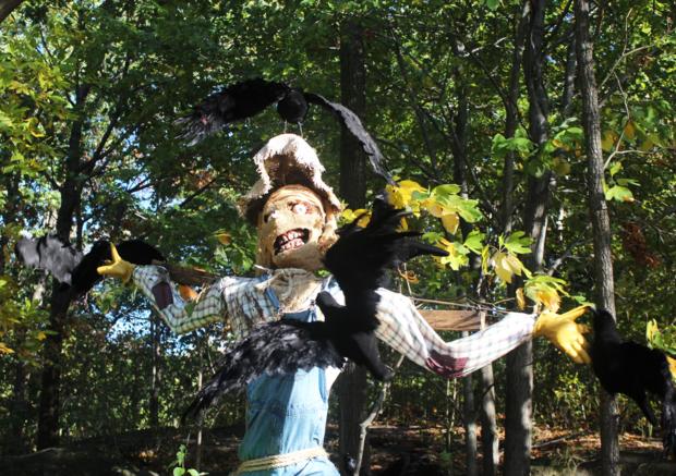 scarecrowbirds2.png
