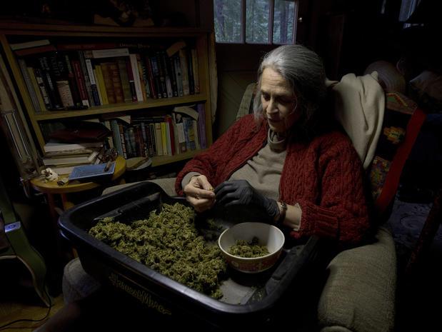 California's pot farmers