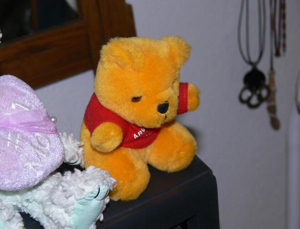 DNA found on teddy bear