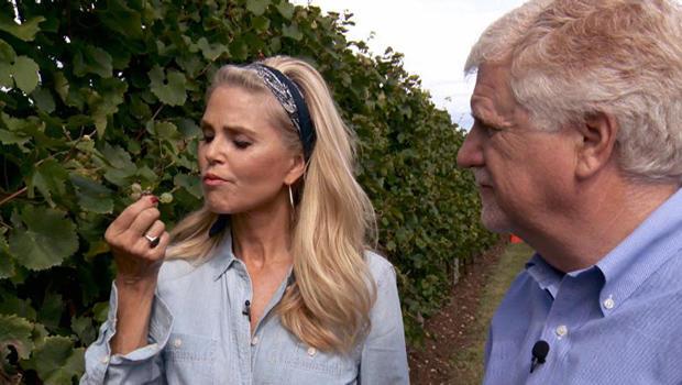 christie-brinkley-vineyard-mark-phillips-620.jpg
