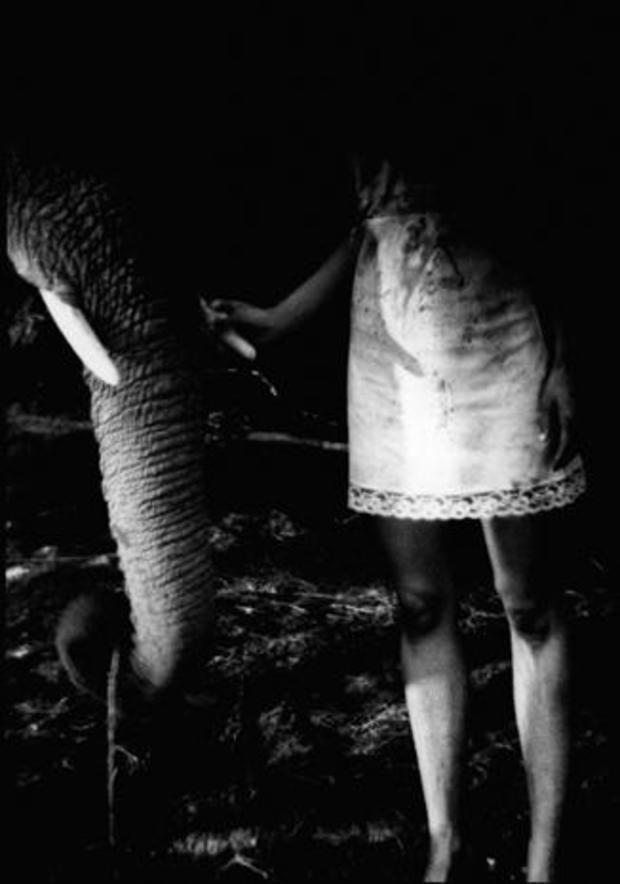 viggo-mortensen-art-daisy-1994.jpg