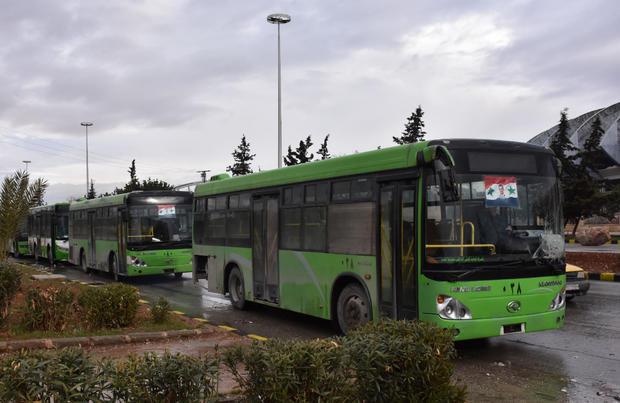 aleppo-green-buses-629609548.jpg