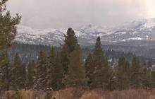 Nature:  Winter wonderland