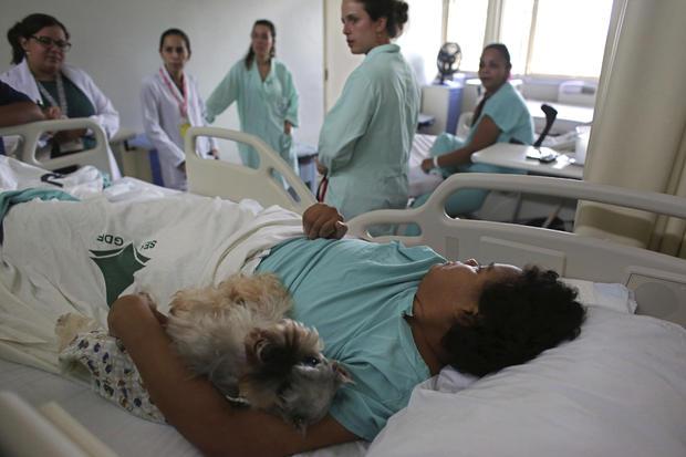 brazilian-therapy-dogs-8-2016-12-30.jpg