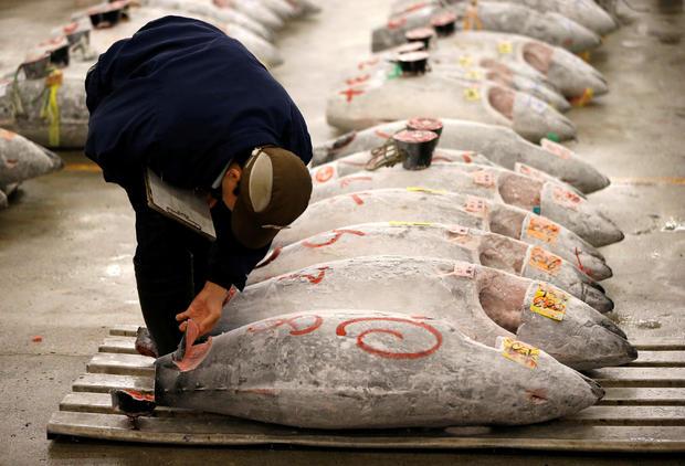 tokyo-tsukiji-tuna.jpg
