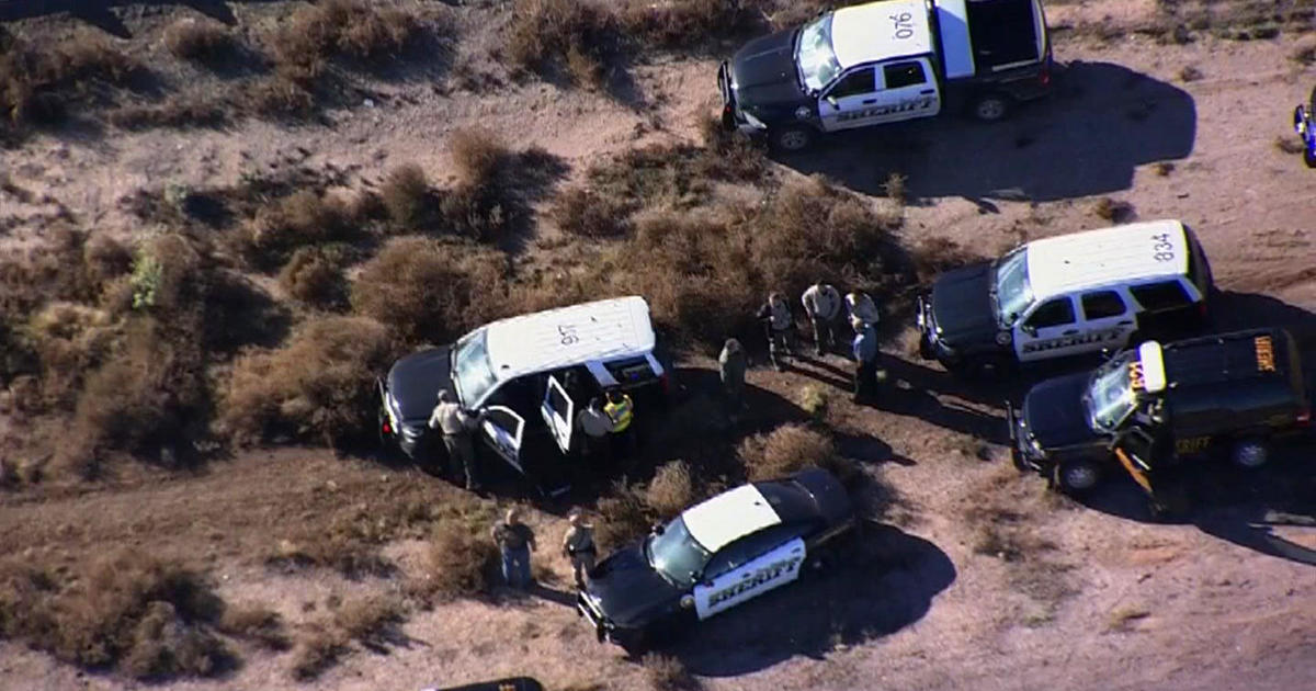 Arizona police led on wild chase after naked woman steals
