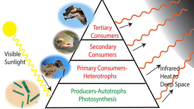 energy-pyramid-620.jpg