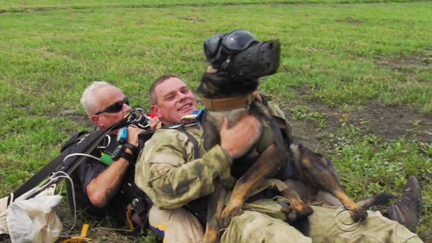 patta-skydiving-dogs-3-2017-3-9.jpg
