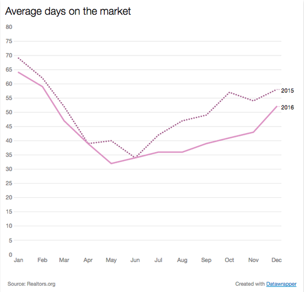 market-days.png