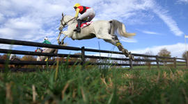 Danger and beauty of a lesser-known style of horse racing