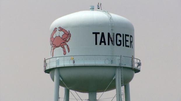 tangier-crab.jpg
