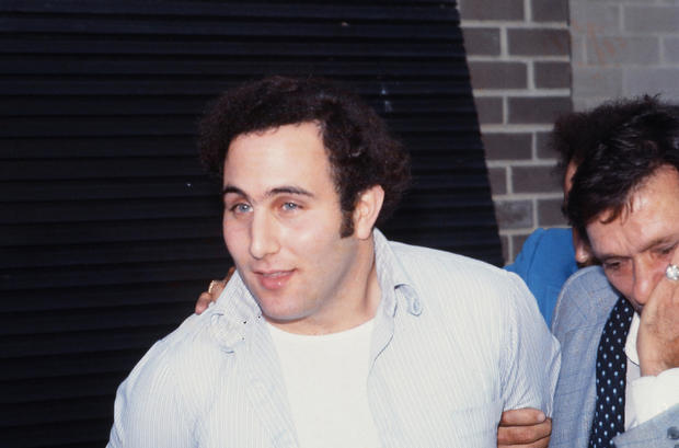 David Berkowitz in custody