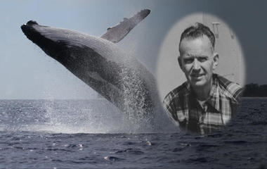 Whale song: A grandfather's legacy