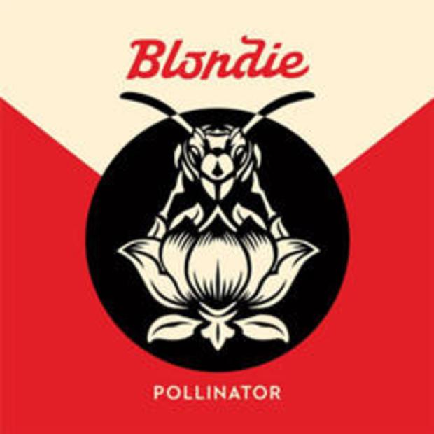 blondie-pollinator-noble-id.jpg