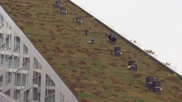 grass-rooftop-with-bike-run-copenhagen.jpg
