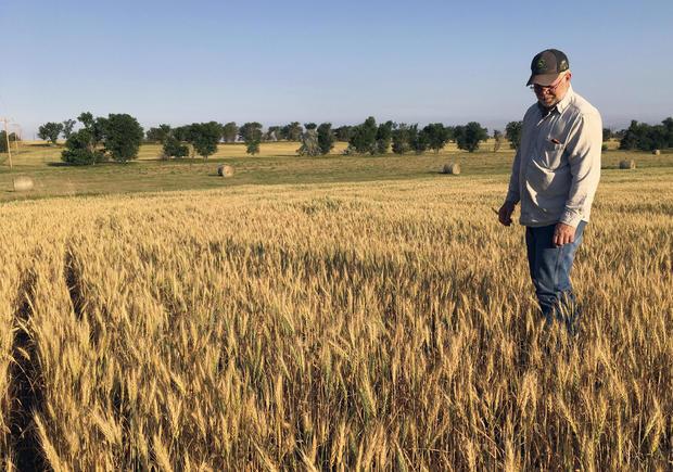 Plains Drought