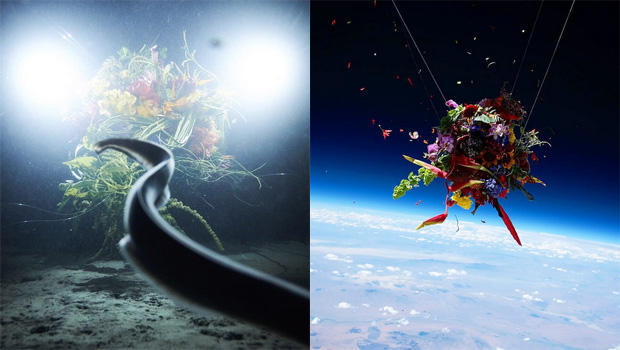 makoto-azuma-sephirothic-flower-diving-into-the-unknown-exobiotanica2-botanical-space-flight-620.jpg