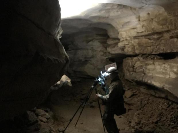 gray-bat-me-in-cave-promo.jpg