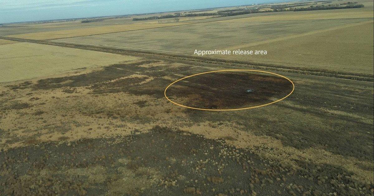 Keystone Pipeline Leak Spills 210000 Gallons Of Oil In South Dakota
